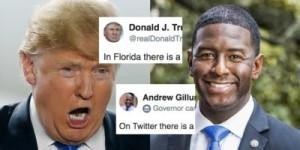 Trump vs Gillum