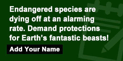 Endangered species are dying off at an alarming rate. Demand protections for Earths fantastic beasts!